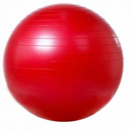 Фитбол (гимнастический мяч) гладкий с системой ABS VEGA-501/55, 55 см