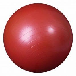 Гимнастический мяч с ABS L 0765b