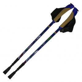 Телескопические палки для скандинавской ходьбы Ergoforce Е 0680