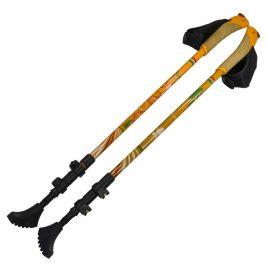 Телескопические палки для скандинавской ходьбы из карбона Ergoforce Е 0679